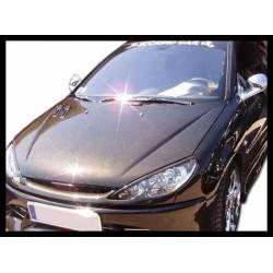 Capó Carbono Peugeot 206 S/T